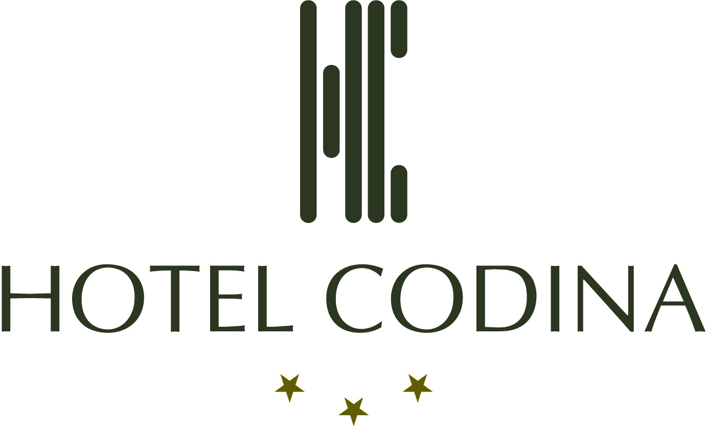 Hotel Codina***